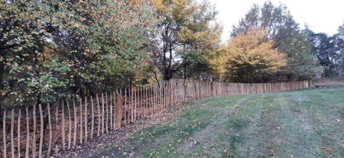 plot za štípaného akátu
